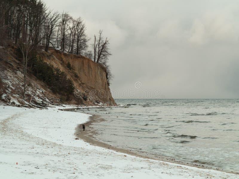 Mar Báltico Gdynia, penhasco no Polônia de Orlowo. Cenário do inverno fotos de stock royalty free
