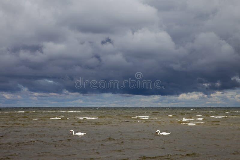 Download Mar Báltico oscuro foto de archivo. Imagen de báltico - 41906582