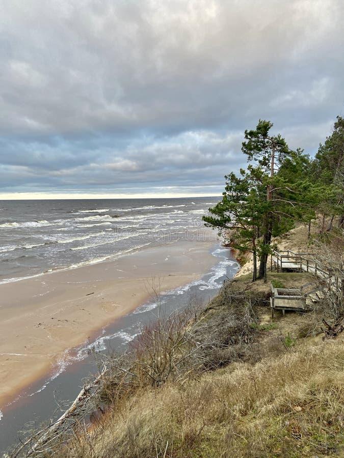 Mar Báltico outono costa mar praia mar Saulkrasti Letónia imagens de stock royalty free