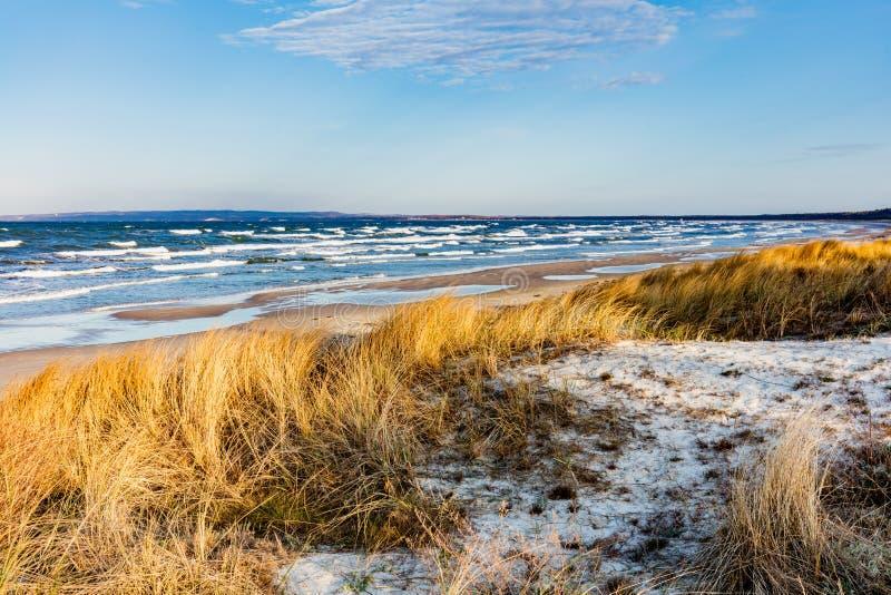 Mar Baltico con l'erba dorata della duna fotografia stock libera da diritti