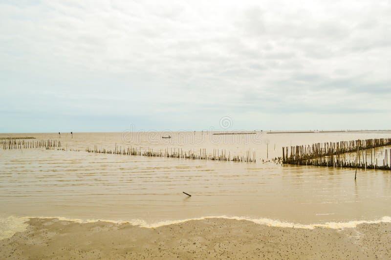 Mar de Bangpakong em Chachoengsao em Tailândia fotos de stock royalty free
