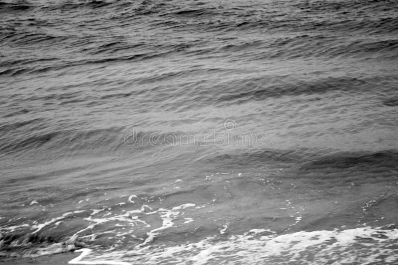 Mar de Key Biscayne imagens de stock