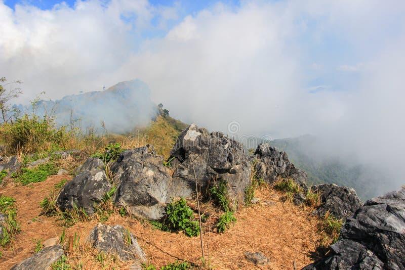Mar de la niebla en Doi Pha Tang, Chiang Rai, Tailandia septentrional imagen de archivo libre de regalías