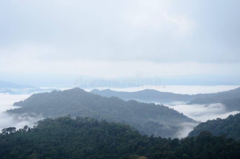 Mar de la niebla en la montaña Fondo de la falta de definición fotografía de archivo
