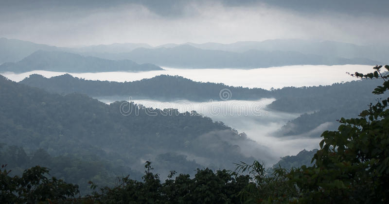 Mar de la niebla en la montaña Fondo de la falta de definición imagenes de archivo