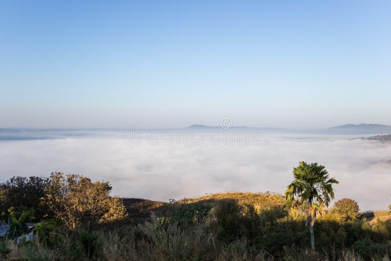 Mar de la niebla por la mañana en Khao Kho, provincia de Phetchabun, Tailandia septentrional fotografía de archivo libre de regalías