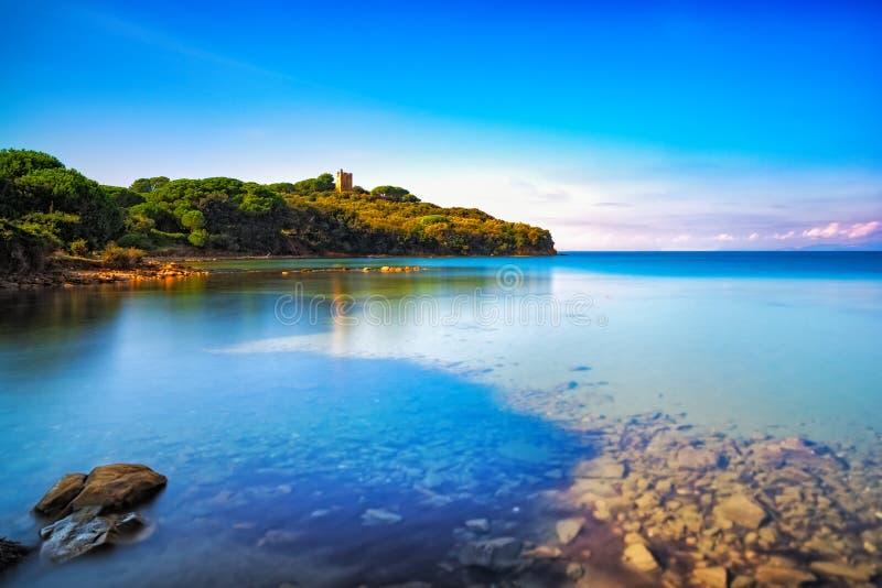 Mar de Punta Alá, baía selvagem da praia Maremma Toscânia, Itália Europa fotos de stock