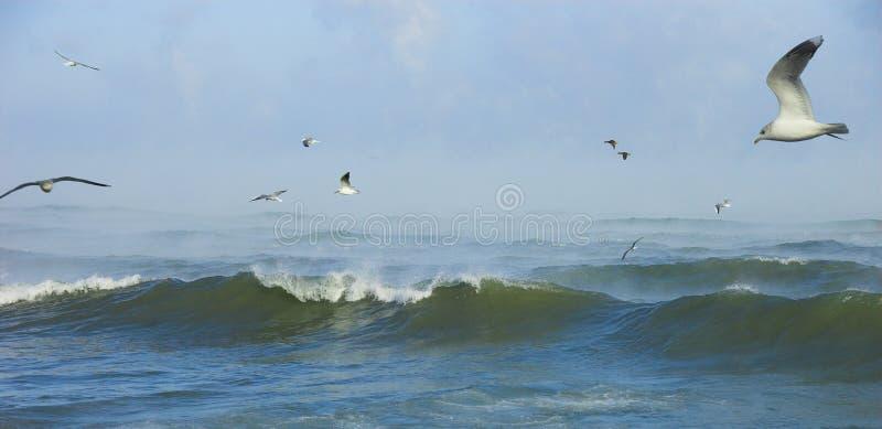 Mar de tormenta en día escarchado imagen de archivo libre de regalías