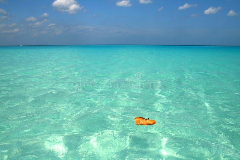 Mar de Tropica foto de stock royalty free