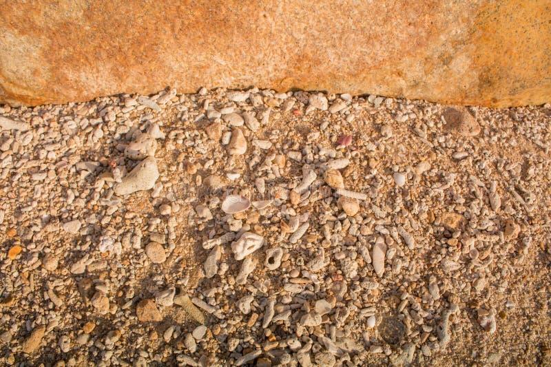 Mar dei Coralli della pietra di Brown del fondo a phuket Tailandia fotografia stock