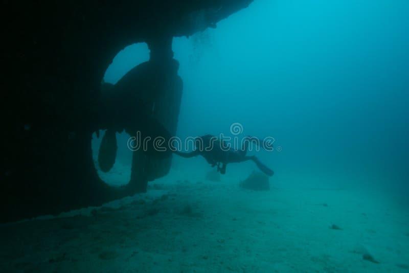 Mar del Caribe de la vida del safari subacuático coralino del salto fotos de archivo libres de regalías