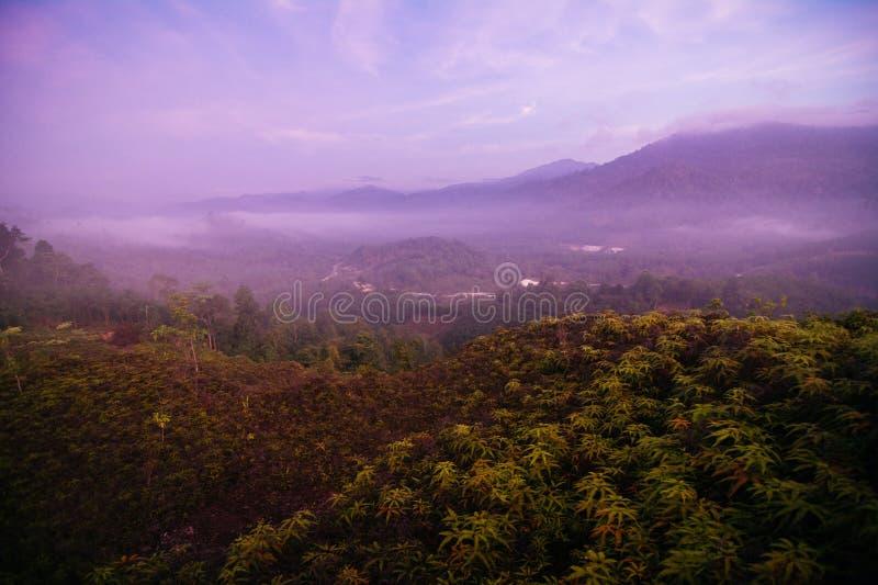 Mar del punto de opinión de la niebla de Krungshing de la niebla imagen de archivo