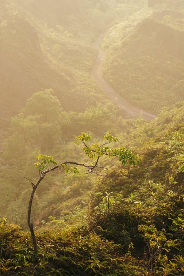 Mar del punto de opinión de la niebla de Krungshing de la niebla fotografía de archivo