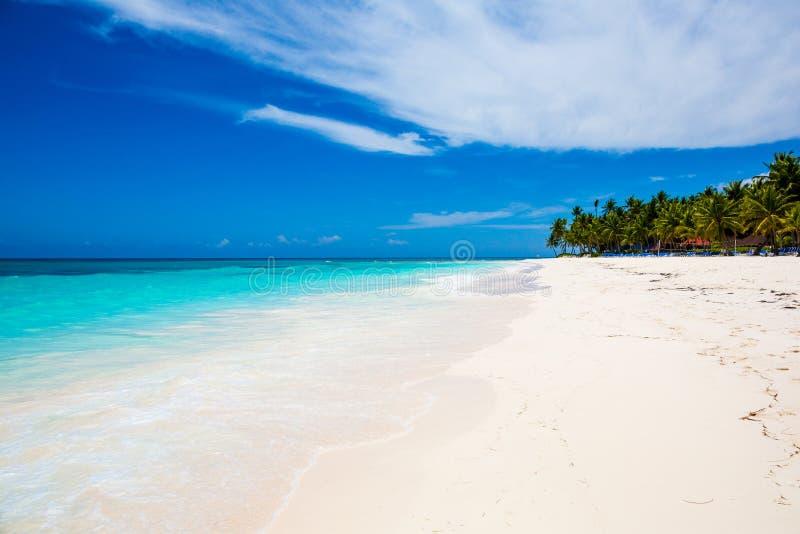 Mar do Cararibe e palmas fotografia de stock royalty free