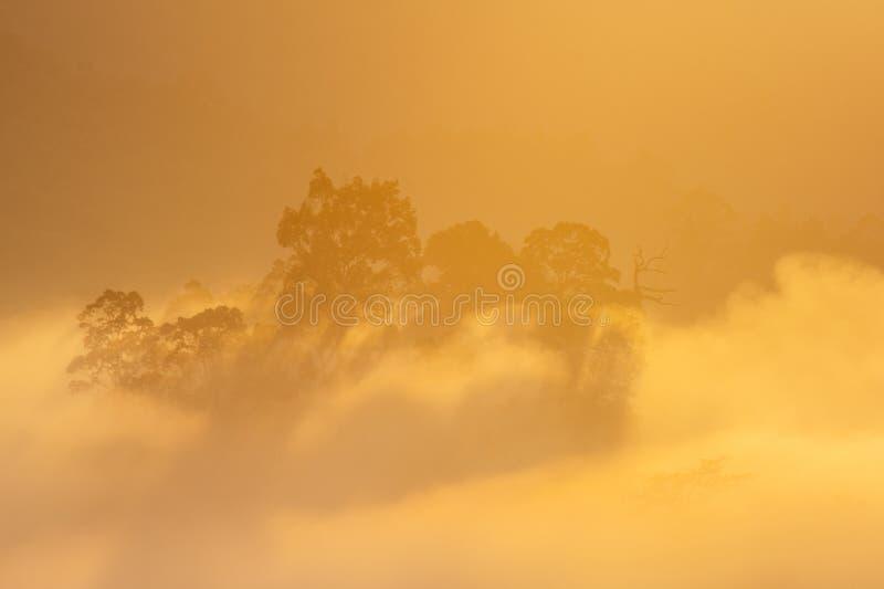 Mar do ponto de opinião da névoa de Krungshing da névoa imagens de stock royalty free