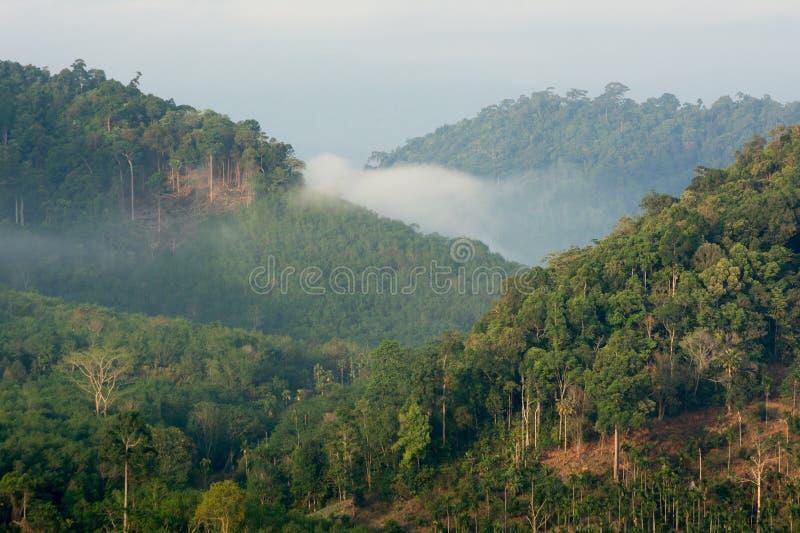 Mar do ponto de opinião da névoa de Krungshing da névoa imagem de stock