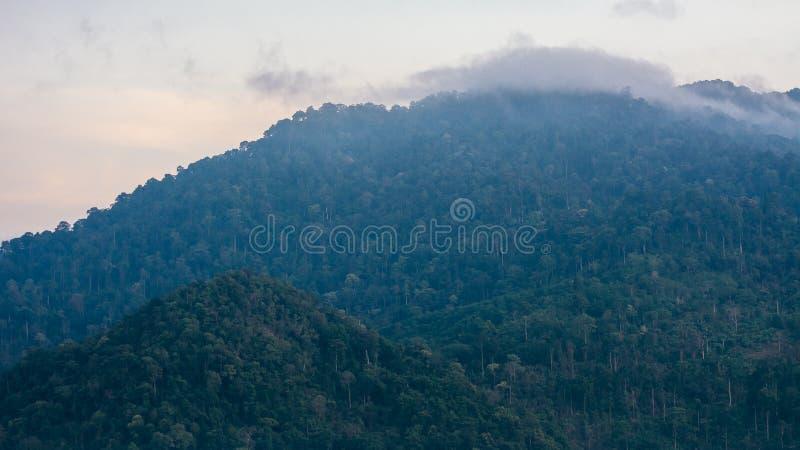 Mar do ponto de opinião da névoa de Krungshing da névoa imagens de stock