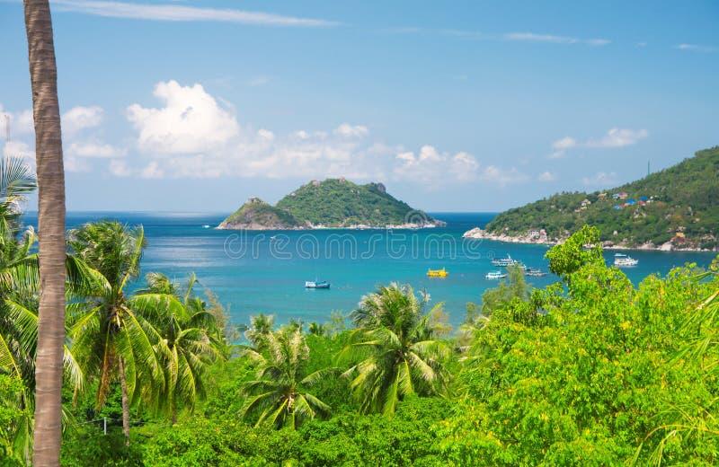 Mar e selva. console bonito de tao do ko. Tailândia fotos de stock royalty free