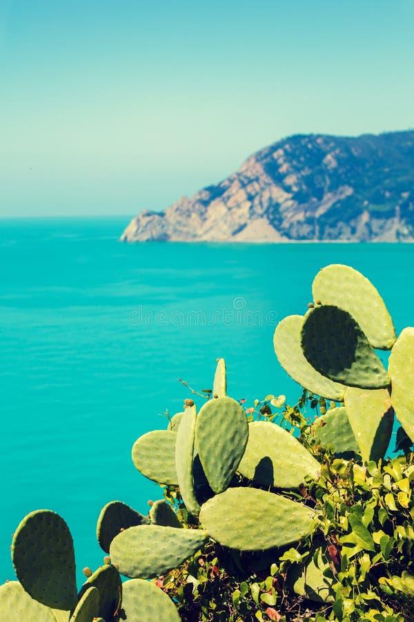 Mar Ligure roccioso della costa di mare immagini stock libere da diritti