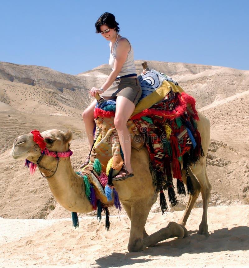 Mar muerto Israel del camello de la chica joven fotos de archivo libres de regalías
