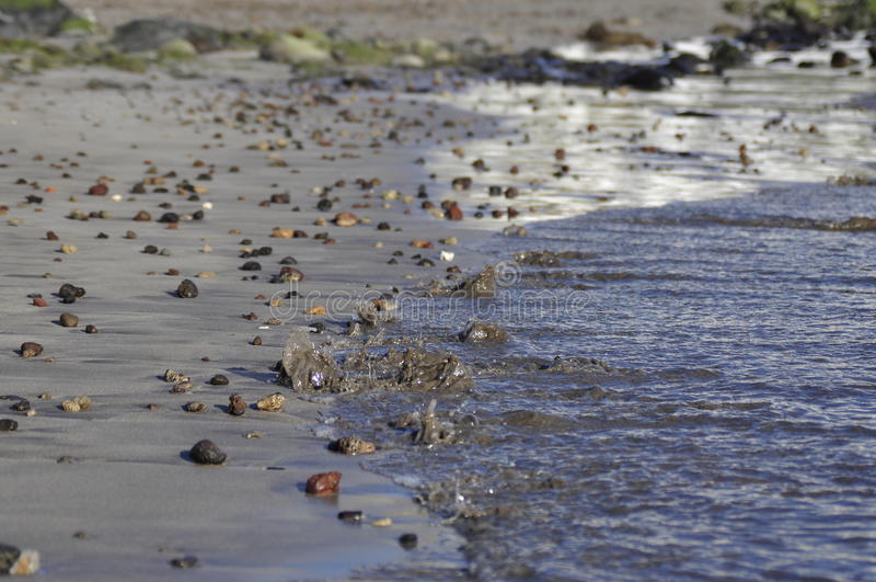 Mar Pebble Beach da onda imagens de stock