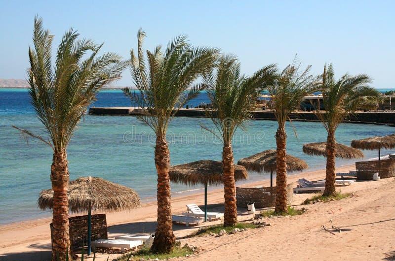 Mar Rojo del hurghada de la playa foto de archivo libre de regalías
