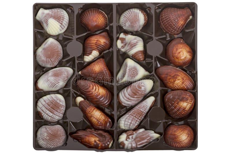 Mar Shell Pralines foto de archivo libre de regalías