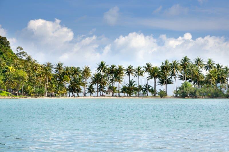 Mar tropical con la playa arenosa, las palmeras y las casas de planta baja en horizonte debajo del cielo azul con las nubes en la imagen de archivo libre de regalías