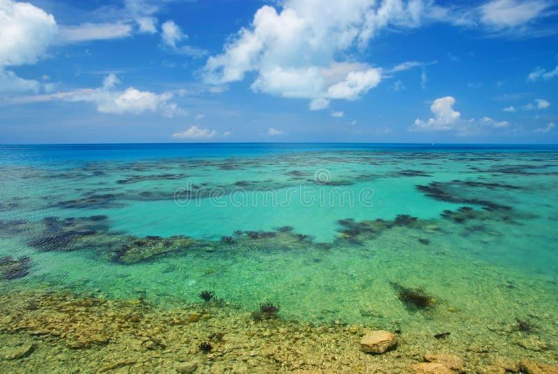 Mar tropical em Bermuda imagens de stock