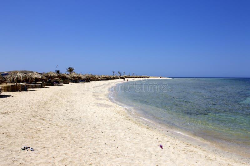 Mar Vermelho sul Egito do dabbab de Abu imagem de stock royalty free