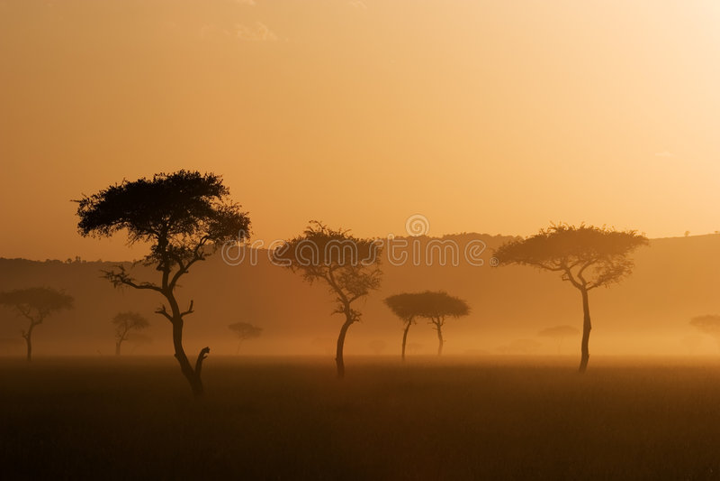 mara ηλιοβασίλεμα massai στοκ φωτογραφίες με δικαίωμα ελεύθερης χρήσης
