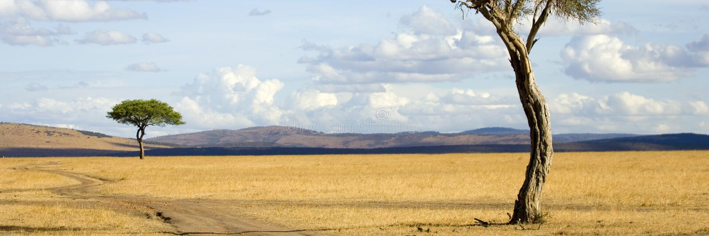 mara masajów obraz royalty free