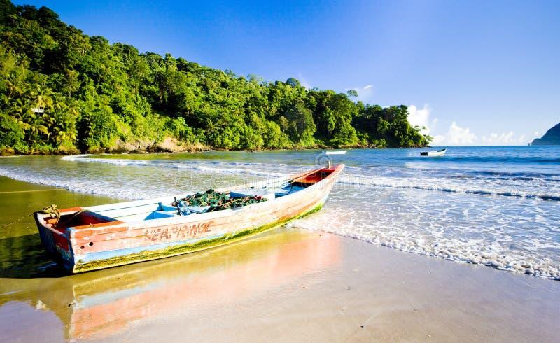 Maracas Bay stock image