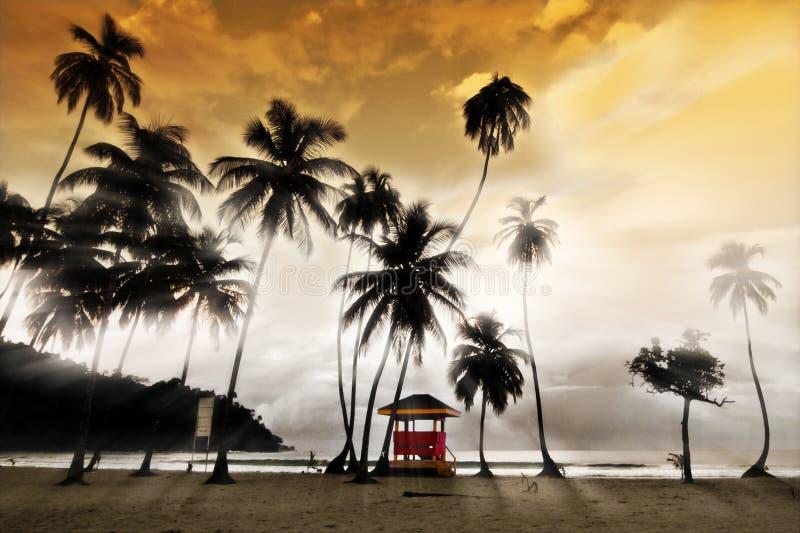 Maracas Beach - Lifeguard Hut royalty free stock photo