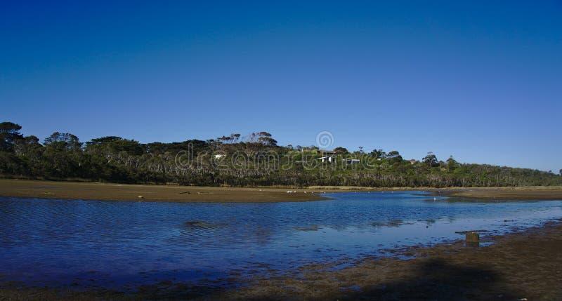 Marais avec de l'eau bleu le jour ensoleillé images libres de droits