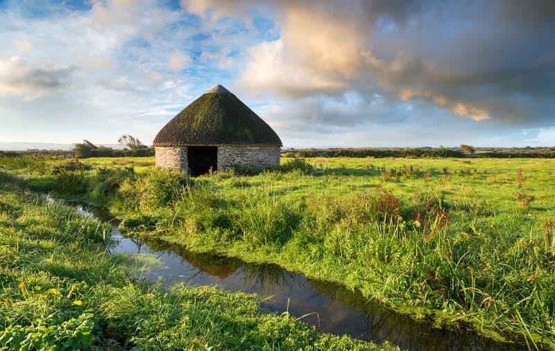 Marais de Braunton en Devon image libre de droits