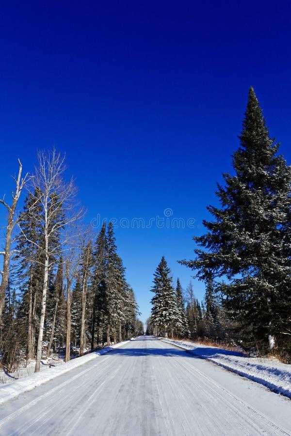 Marais de saxo-Zim dans la neige d'hiver photos stock