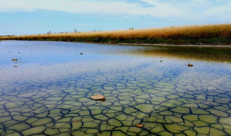 Marais de sel image stock