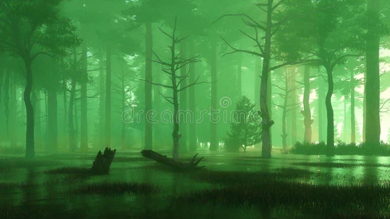 Marais mystérieux de forêt à la nuit ou au crépuscule brumeuse illustration libre de droits