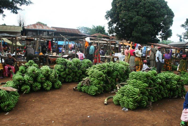 Marangu bananmarknad fotografering för bildbyråer