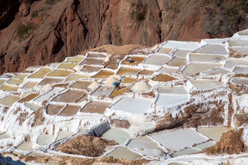 Maras Salt Mines, Peru royalty free stock images