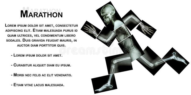 Marathon (human bone is running) ,(Whole body x-ray) stock illustration