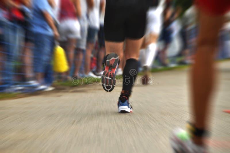maratonów biegacze fotografia royalty free
