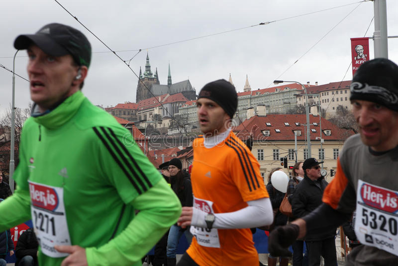 Maraton i Prague, Tjeckien royaltyfria foton