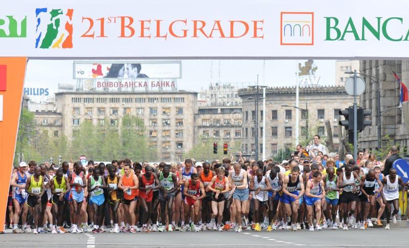 Maratona 2008 de Belgrado imagem de stock
