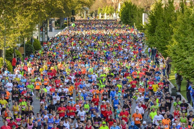 Maratona fotos de stock