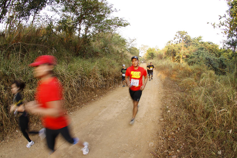 maratonlöparetrail royaltyfri foto