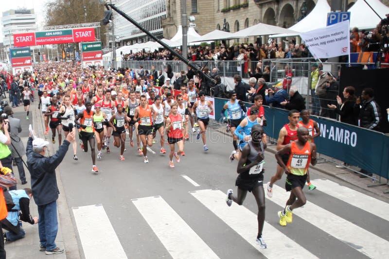 maratonrotterdam start 2012 royaltyfria foton