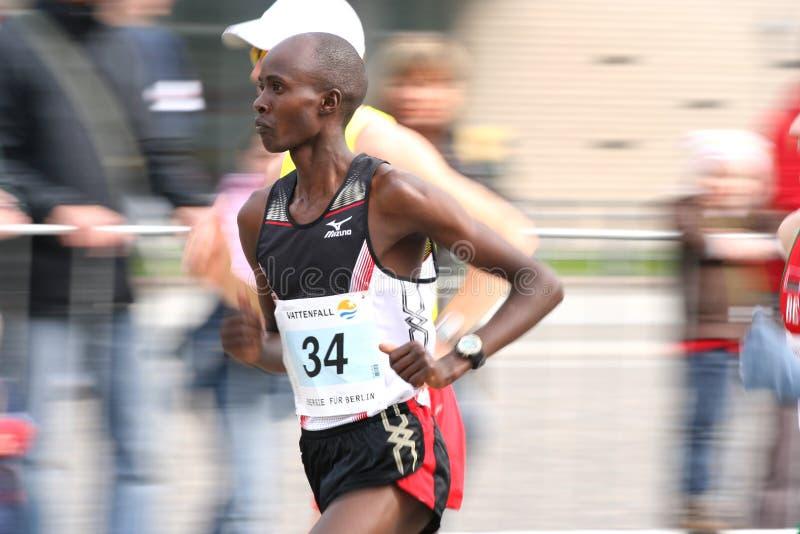 maratonu przyrodni biegacz obrazy stock