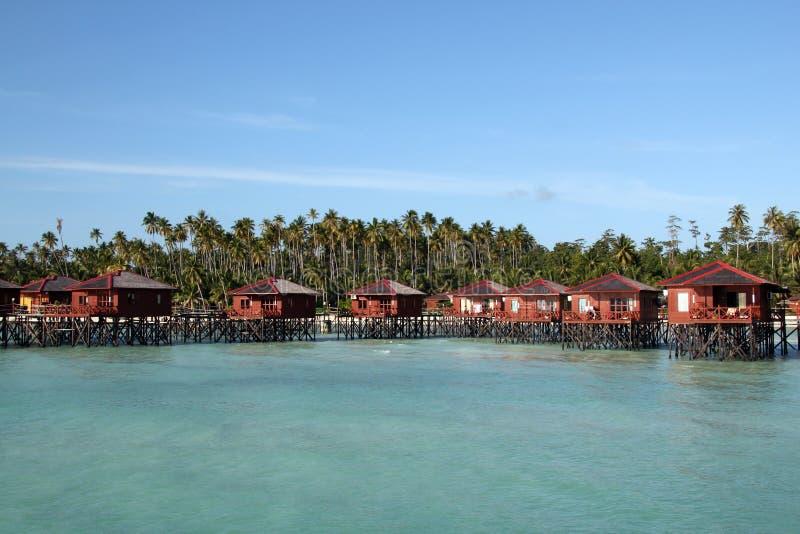 Download Maratua Paradise stock image. Image of paradise, tree - 25580803